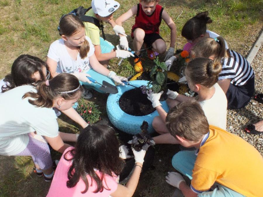 Dzieci sadzą rośliny