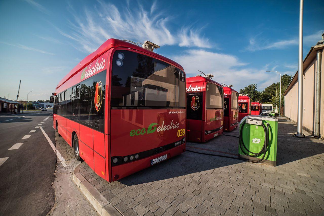 zdjęcie miejskich autobusów