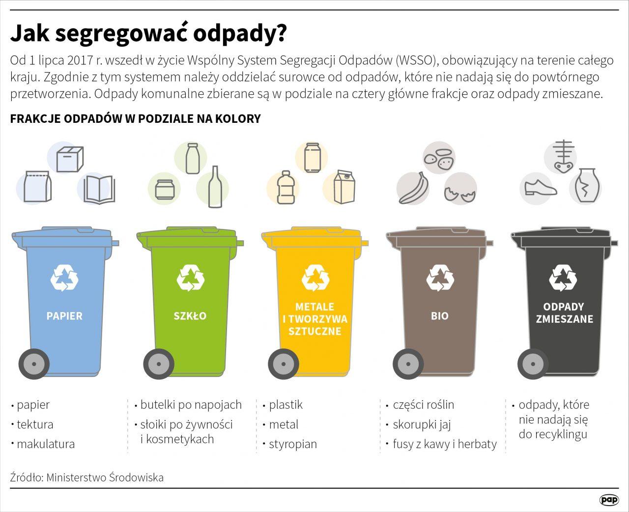 infografika: segregowanie odpadów